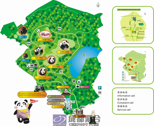 成都大熊猫繁育研究基地创建aaaa级旅游景区策划